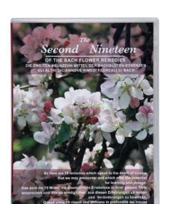 Second Nineteen (PAL) (EN/DE/IT)
