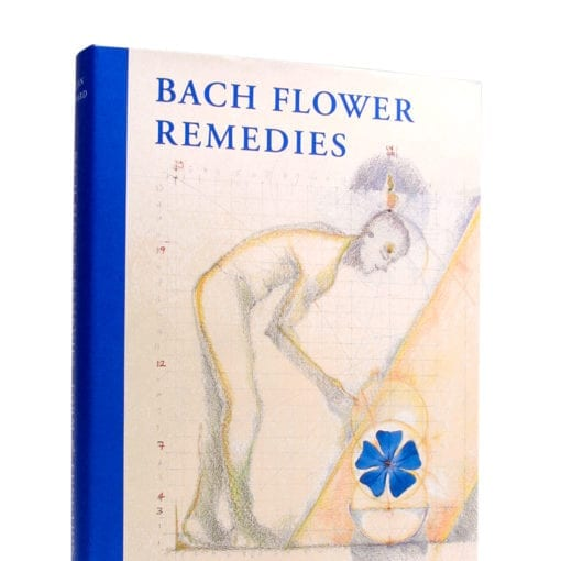 Bach Flower Remedies Form And Function