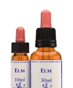 Elm Bach Flower Essence